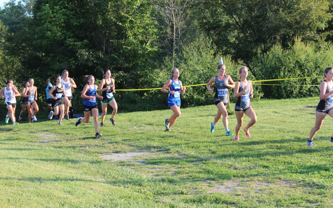 Alice Lloyd Lady Eagles and Eagles Cross Country Finish Second at NCCAA DII Nationals